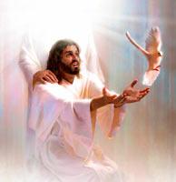 Trindade  10 Perguntas Para Quem NÃO Crê   SÉTIMO DIA c21b476af1